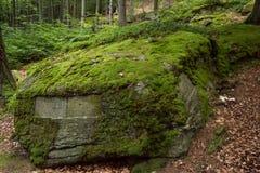 Vegetation, Moss, Nature Reserve, Rock stock photography