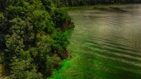 Vegetation, Nature, Nature Reserve, Ecosystem