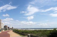 Vegetation och strand för promenad grön mot stadshorisont Arkivbilder
