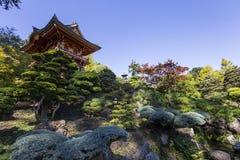Vegetation och träd i en japanträdgård Royaltyfri Fotografi