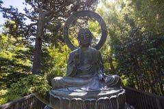 Vegetation och träd i en japanträdgård Royaltyfri Bild