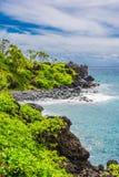 The vegetation on the pebble beach, Wai'anapanapa. A view of a part of the coast of Wai'anapanapa in Maui, Hawaii Royalty Free Stock Photos