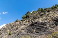 Vegetation on rock face against summer blue skies in Barranco de las Augustias, La Palma Island, Canary Islands, Spain royalty free stock images