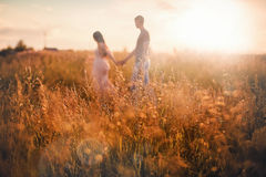 The vegetation in the sun with figures of lovers in the background. Summer evening Stock Photography