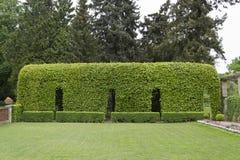 Vegetation tunnel in Potsdam's Roman baths garden Royalty Free Stock Images