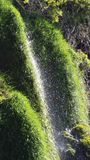 Vegetation, Water, Nature Reserve, Grass