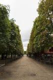 Vegetationkorridoren på parkerar Fotografering för Bildbyråer