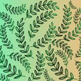 Vegetative pattern - green gradient of branch with leaves. Florar background Stock Photos