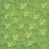 Vegetative seamless pattern. Stock Photo