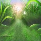 Vegetazione-bello sfondo naturale fertile verde Fotografie Stock