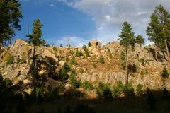 Vegetazione boschiva e cielo blu verdi Immagini Stock Libere da Diritti