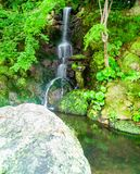 Vegetazione corrente di verde della depressione della cascata serica e sopra muschio co fotografia stock