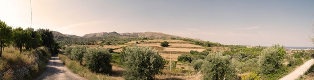Vegetazione della Sicilia Fotografia Stock
