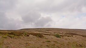 Vegetazione di Moorland su un plateau in montagne di Wicklow, Irlanda fotografia stock