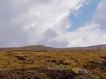 Vegetazione di Moorland su un plateau in montagne di Wicklow, Irlanda fotografia stock libera da diritti