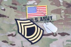 Vegetazione lussureggiante del sergente maggiore dell'ESERCITO AMERICANO, toppa della bandiera, con la medaglietta per cani sull' Fotografia Stock
