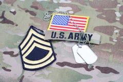 Vegetazione lussureggiante di sergente First Class dell'ESERCITO AMERICANO, toppa della bandiera, con la medaglietta per cani sul Fotografia Stock