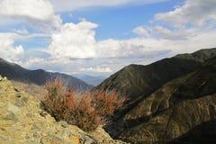 Vegetazione, montagne, giorno, nuvole immagine stock libera da diritti