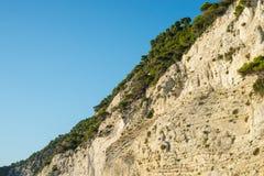 Vegetazione sulla costa Fotografia Stock