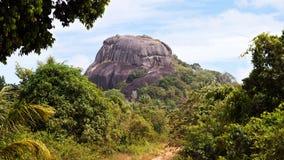 Vegetazione verde media sul Belitung dell'isola, Indonesia della grande roccia nera Fotografie Stock