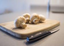 Vegeterian饮食建议,在一个木板的整个蘑菇 免版税库存图片