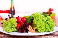Vegeterian food Royalty Free Stock Photos