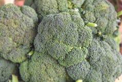 Vegeterian healthy green salad broccoli in supermarket. Close Stock Photos
