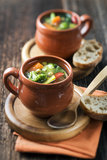 Vegeterian soup Royalty Free Stock Photo