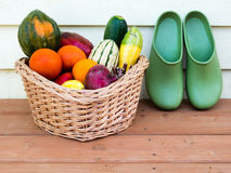 Veggie basket with garden clogs Royalty Free Stock Photography
