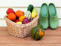 Veggie basket and garden clogs Stock Photos