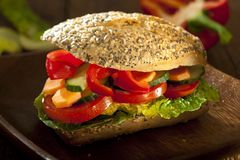 Veggie burger Stock Photography