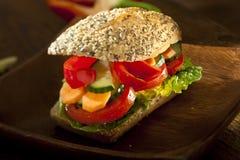 Veggie burger Stock Images