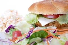 Veggie-Burger lizenzfreies stockfoto