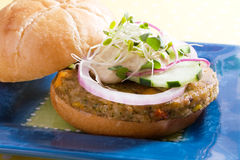 Free Veggie Burger Royalty Free Stock Photography - 9371757
