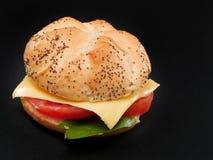 Veggie Burger Royalty Free Stock Photography