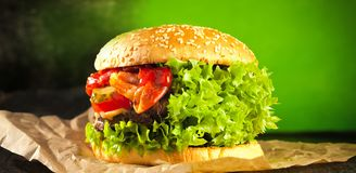 Veggie burger with salat and vegetables concept. stock image