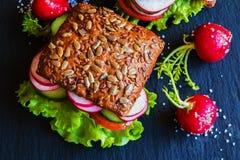 Veggie burgers (green salad, fresh cucumber, tomato, radish) and radish on dark background Royalty Free Stock Image