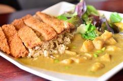 Veggie curry'ego ryż Fotografia Royalty Free