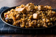 Veggie Fried Rice Rice med tofuen/Pilav eller pilaff Royaltyfri Fotografi