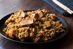 Veggie Fried Rice Rice med tofuen/Pilav eller pilaff Royaltyfri Bild