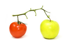 Veggie and fruit. Tomato on branch with green apple Stock Photos