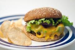 Veggie hamburger met spaanders Stock Foto