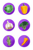 Veggie Icons Royalty Free Stock Photography
