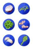 Veggie-Ikonen Lizenzfreies Stockfoto