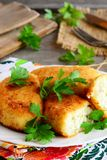 Stuffed vegetarian cutlets on a serving plate. Cutlets prepared from cauliflower and potatoes Royalty Free Stock Images