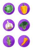 Veggie Pictogrammen Royalty-vrije Stock Fotografie