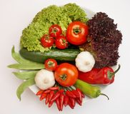 Veggie-Platte - vegetarischer Erzähler Lizenzfreies Stockbild