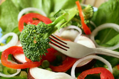 Veggie Salad Royalty Free Stock Photography