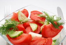 Veggie salad with fennel. Served vegetable salad of tomatoes and cucumbers with fennel Stock Photography