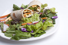 Veggie wrap on a fresh salad. Stock Photos